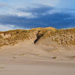 Düne am Strand von Westjütland