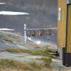 Gelbes Holzhaus wird als Trockendock geneutzt