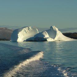 Eisberg im Fjord