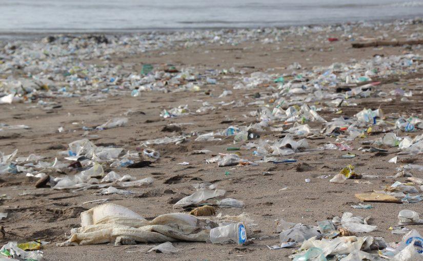 """Von Algen zu Biokunststoffen – oceanBASIS ist Teil des Netzwerkes """"Bio2Pack"""""""