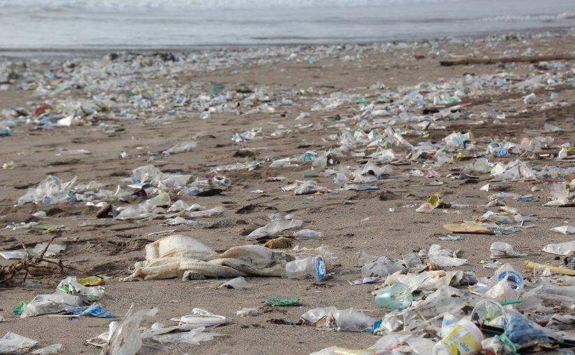 Plastik, Verpackung und das Meer (Teil II)