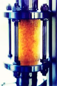 Schauglas mit Algenferment