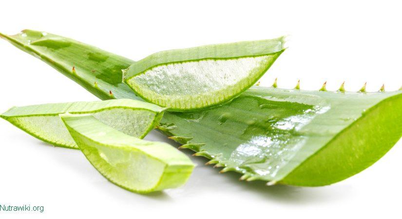 Naturkosmetik mit Aloe Vera