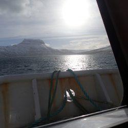 Exkursion in Island