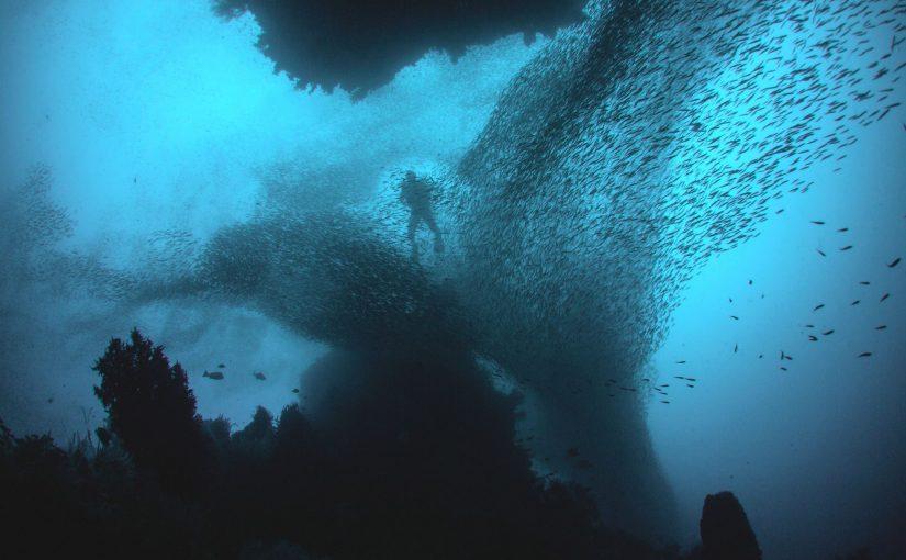 Das Meer – eine geheimnisvolle Schatzkammer