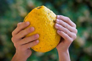 Zitrone in Händen