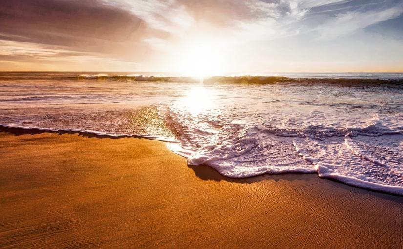 Oceanwells Rohstoffe aus kontrolliert biologischem Anbau