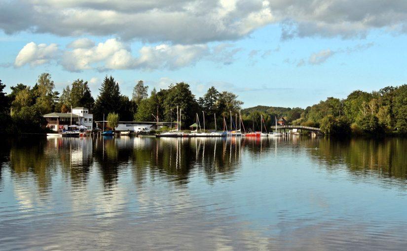 Mit Algen überdüngte Seen retten – wie geht das?