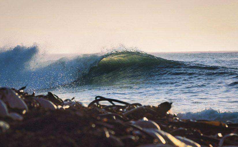 Jodverbindungen aus Meeresalgen beeinflussen das Küstenklima